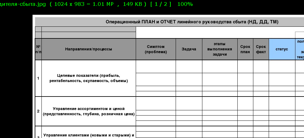 Операционный ПЛАН и ОТЧЕТ линейного руководства сбыта (НД, ДД, ТМ)